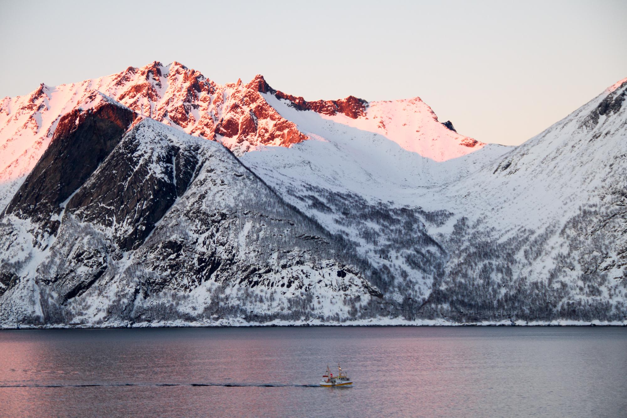 bateau fjord ile Senja Norvege