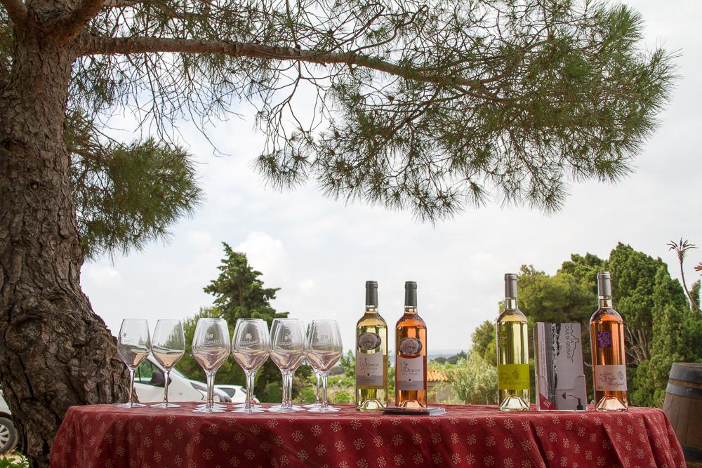 deguisation vins pierre richard