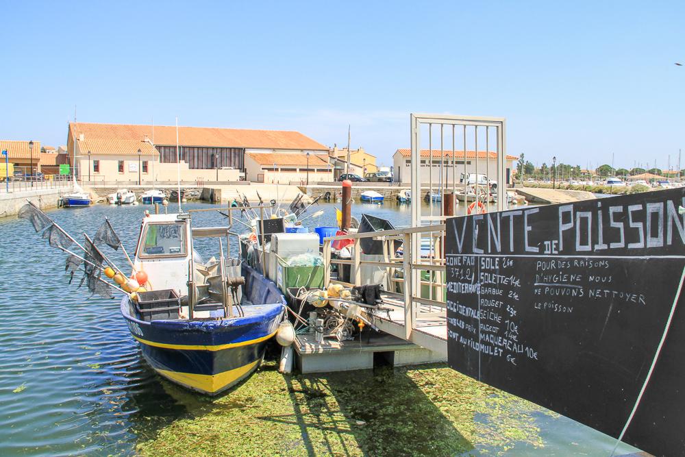 port de pêche gruissan