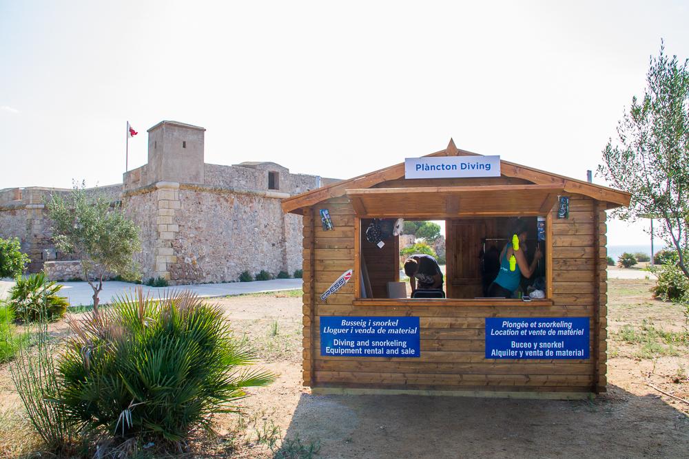 Plancton diving office