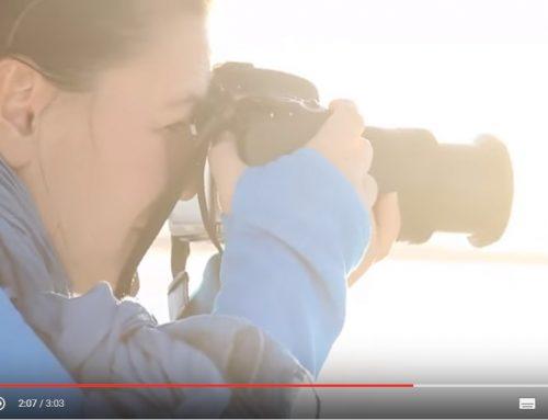 Le Chili, paradis des voyageurs, en vidéos
