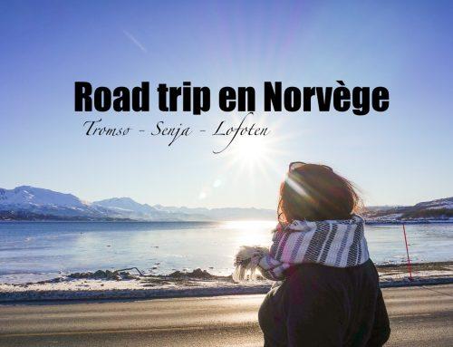 Itinéraire d'un road trip en Norvège du nord